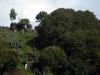 waitomo_landscape
